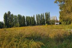 Priľahlý pozemok, kde boli vedľajšie ihriská. V rohu rastie skládka odpadu...