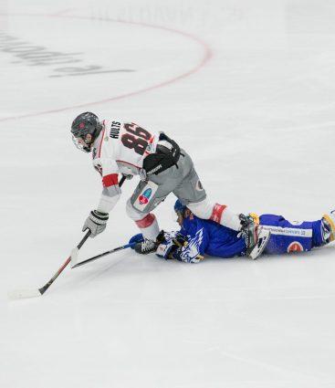 Bratislava Capitals hokej