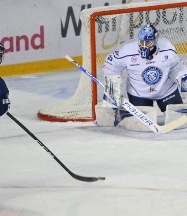Marcel Haščák hokej