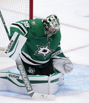 Dallas Stars NHL